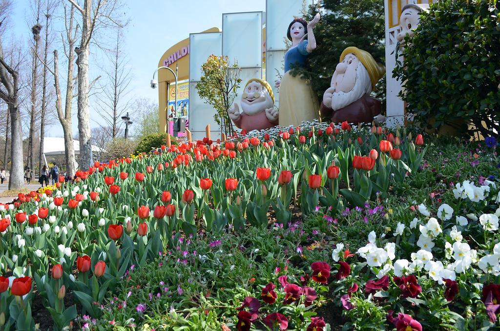 어린이대공원 튤립 및 봄꽃 사진
