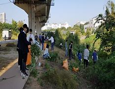 자원봉사활동중인 사진1(활용 위해식물 제거)